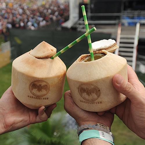 Bamboo straws